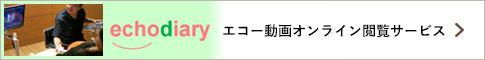 エコー動画オンライン閲覧サービス